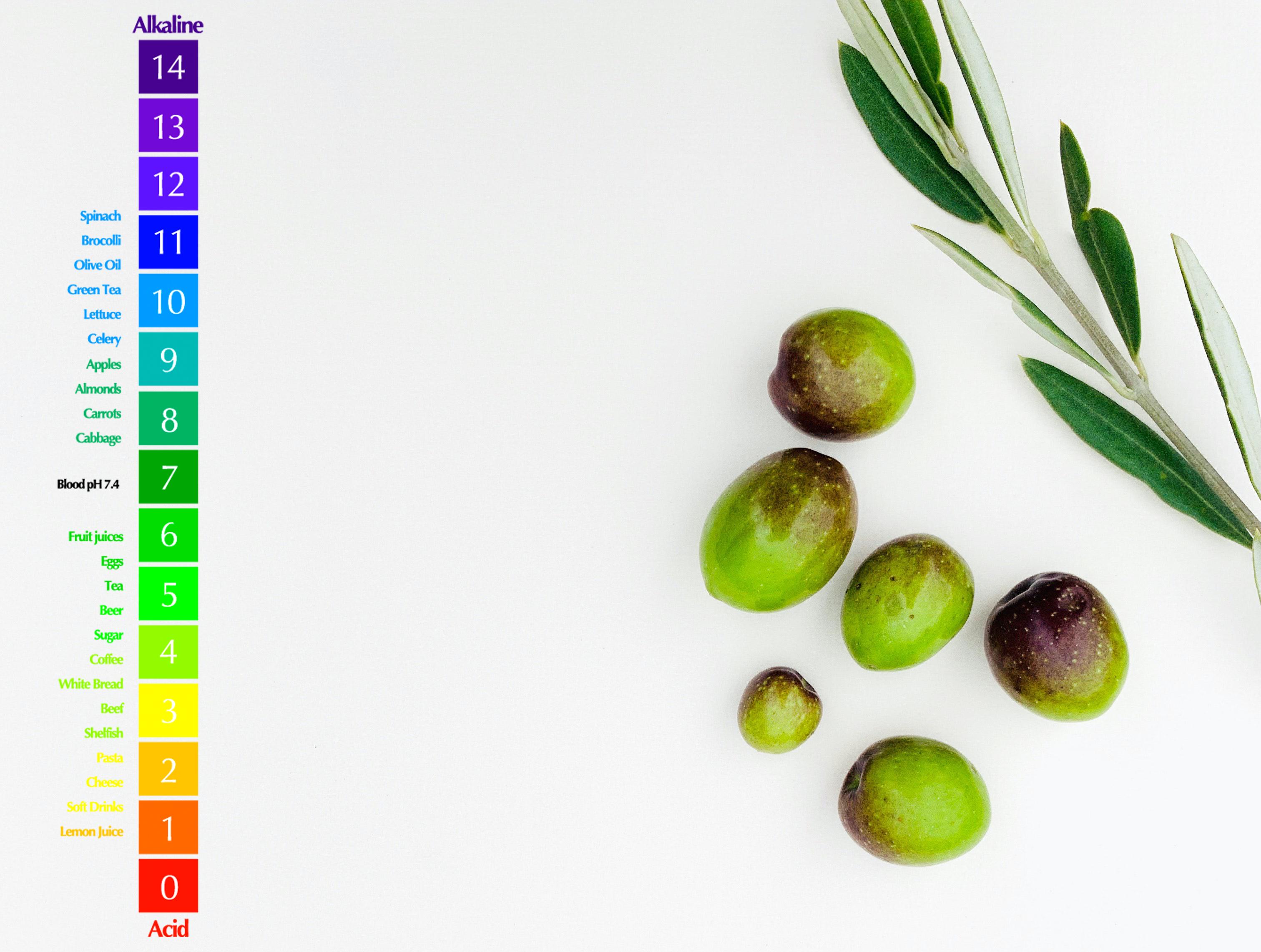 Elaboración de aceitunas de mesa verdes tratadas con soluciones alcalinas