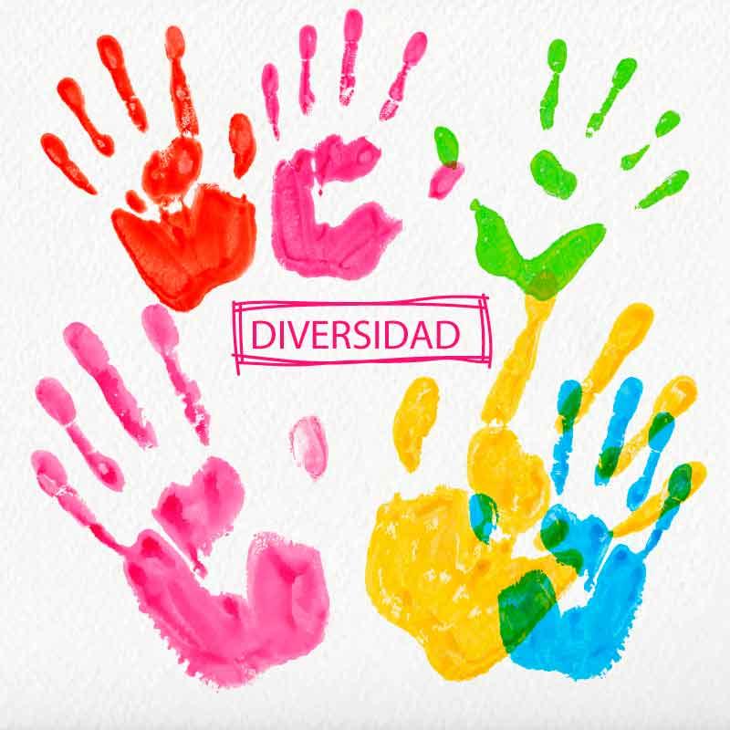 La atención a la diversidad: propuestas de intervención en los centros educativos