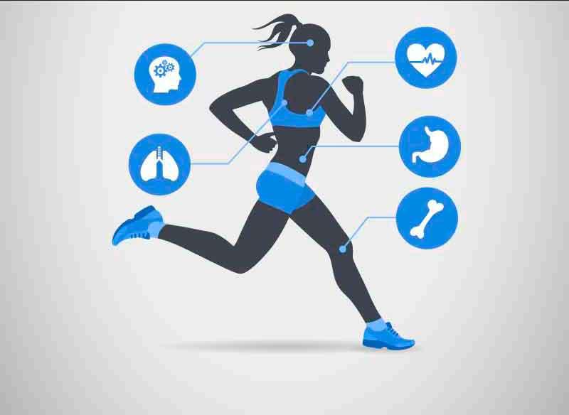 Fisiología del deporte y ayudas ergogénicas
